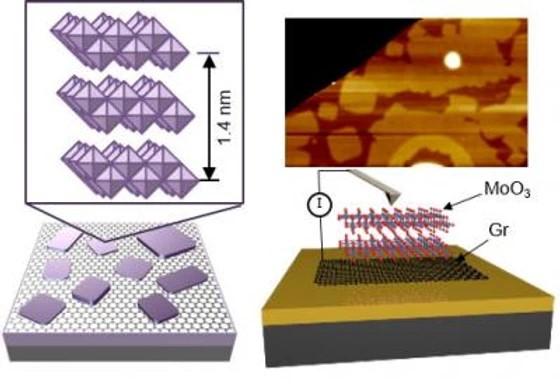 Crystal structure of Mo3 nanosheet
