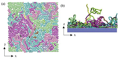MD simulations of polymer chains - Codex International