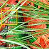 Nanotechnology Camouflage - Codex International