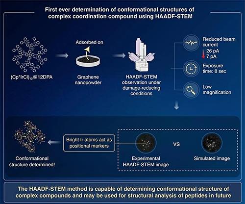 nanotechnology molecular - codex international